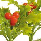 Dalebrook Holly Garnish Divider - (12 Pack)