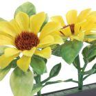 Dalebrook Sunflower Divider - (12 Pack)