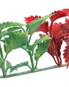 Dalebrook Red & Green Coleus Divider - (12 Pack)