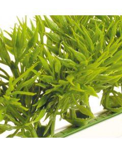 Dalebrook Green Spruce Garnish Divider - (12 Pack)