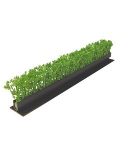 Dalebrook Green Cypress Divider - (12 Pack)