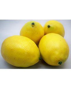 Loose Lemon For Display (Pack of 12)